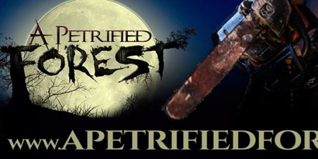 A Petrified Forest